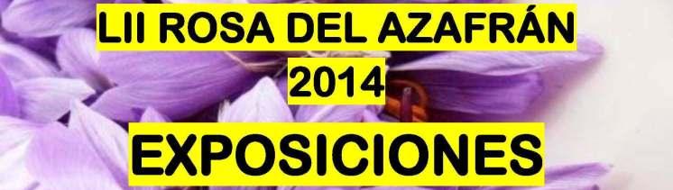 cartel-expo-rosa2014-rec-cabecera.jpg - 90.84 KB