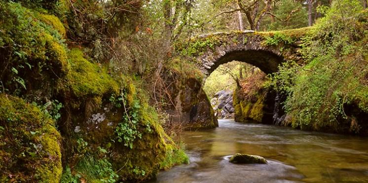 puente-valle-angostura.jpg - 181.85 KB