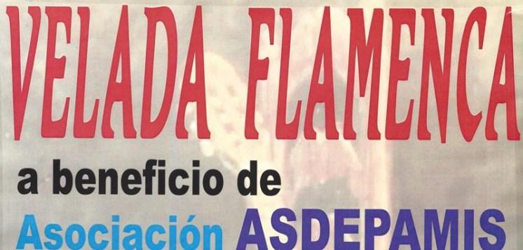 velada-flamenca-asdepamis-2015.jpg - 96.87 KB