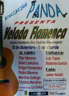 velada-flamenca2015-asociacionpanda.jpg - 168.54 KB