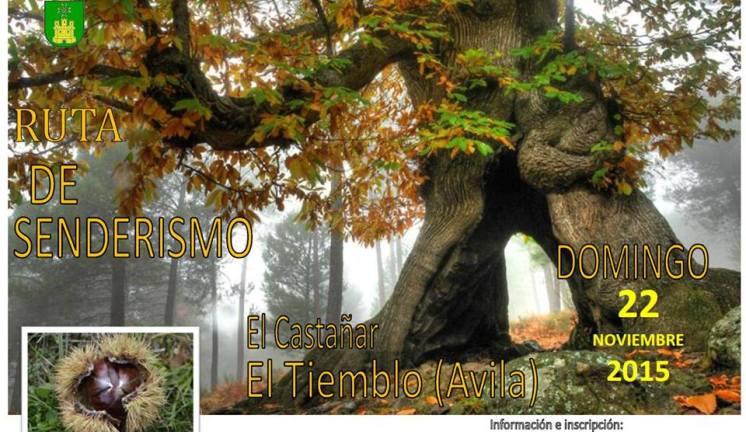 cartel-ruta-senderismo-elcataar-22nov2015.jpg - 136.75 KB