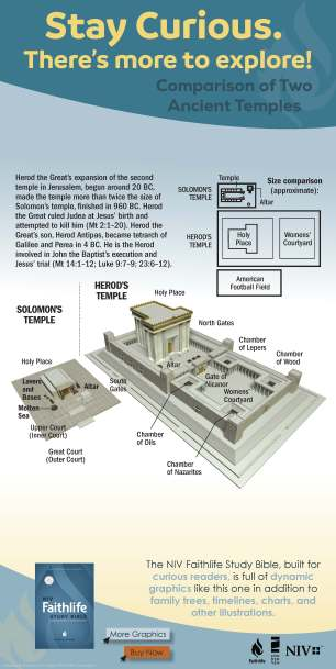 niv-faithlife-infographic-temple-comparison