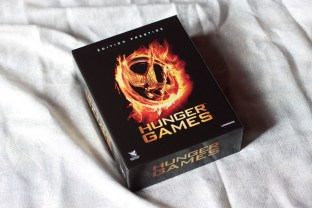 hunger games (8)