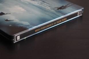 miss peregrine sb (3)