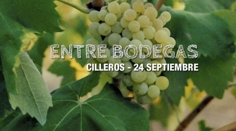 Entre bodegas, el vino de Sierra de Gata