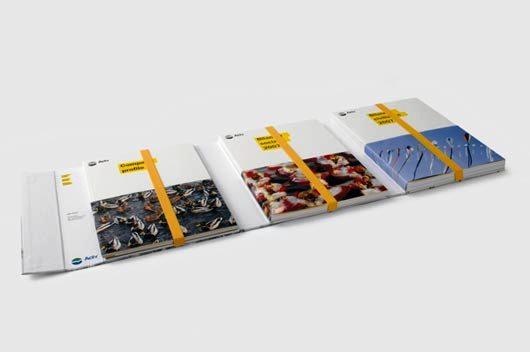 Company-Profile-sebagai-Media-Promosi-dan-Media-Referensi-Download-Contoh-Desain-Desain-Company-Profile-30b