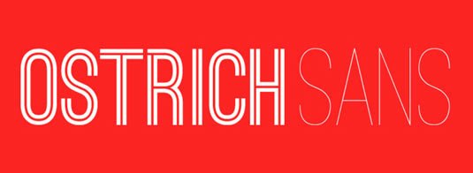 Download Free Font Gratis for Graphic Design and Web - Ostrich-Sans-Free-Font