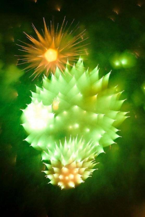 Foto Luar Biasa Yang Belum Pernah Anda Lihat - Gambar-Foto-efek-hasil-jepretan-kamera-terhadap-kembang-api-686x1024