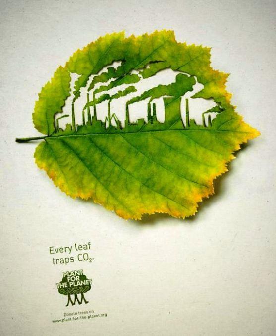 Contoh Format Iklan Advertising dengan Desain Minimalis - Contoh-27-Desain-Iklan-Minimalis-Plant-for-the-Planet-Factory