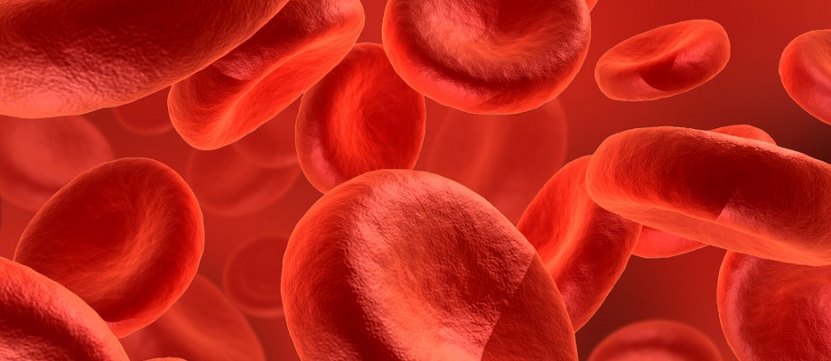 How to increase the Hemoglobin level