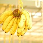 Skin Benefits of Banana