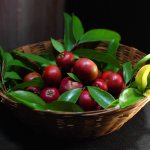 Kokum (Garcinia Indica) benefits