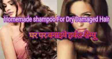 5 type homemade shampoo for dry damaged hair