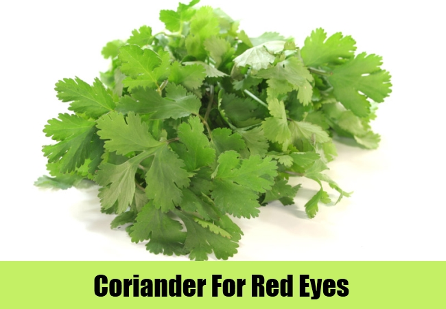 Coriander For Red Eyes