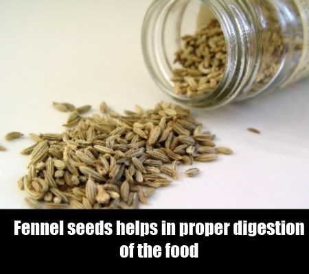 Fennel Seeds Therapy
