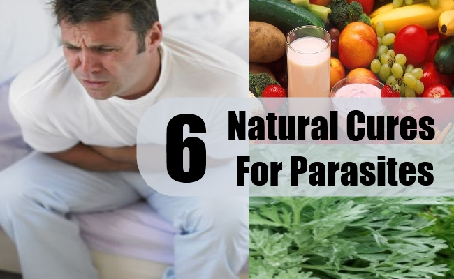 Natural Cures For Parasites