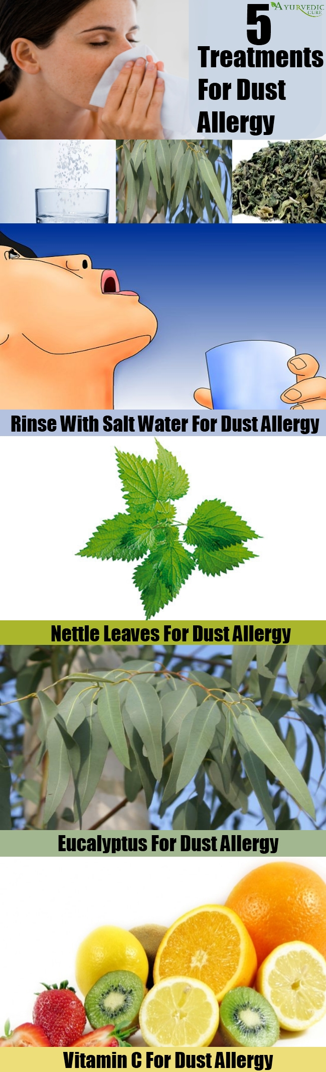 Top 5 Treatments For Dust Allergy