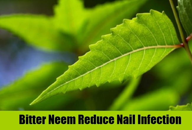 Bitter Neem Reduce Nail Infection