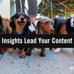 How Data Insights Can Lead Your B2B Content Marketing Strategy