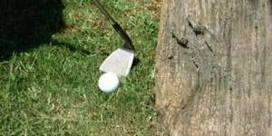 Stuff Happens in Golf