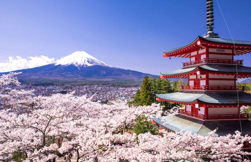 The March to April period was supposed to be the peak tourism period in Japan due to the cherry blossoms season