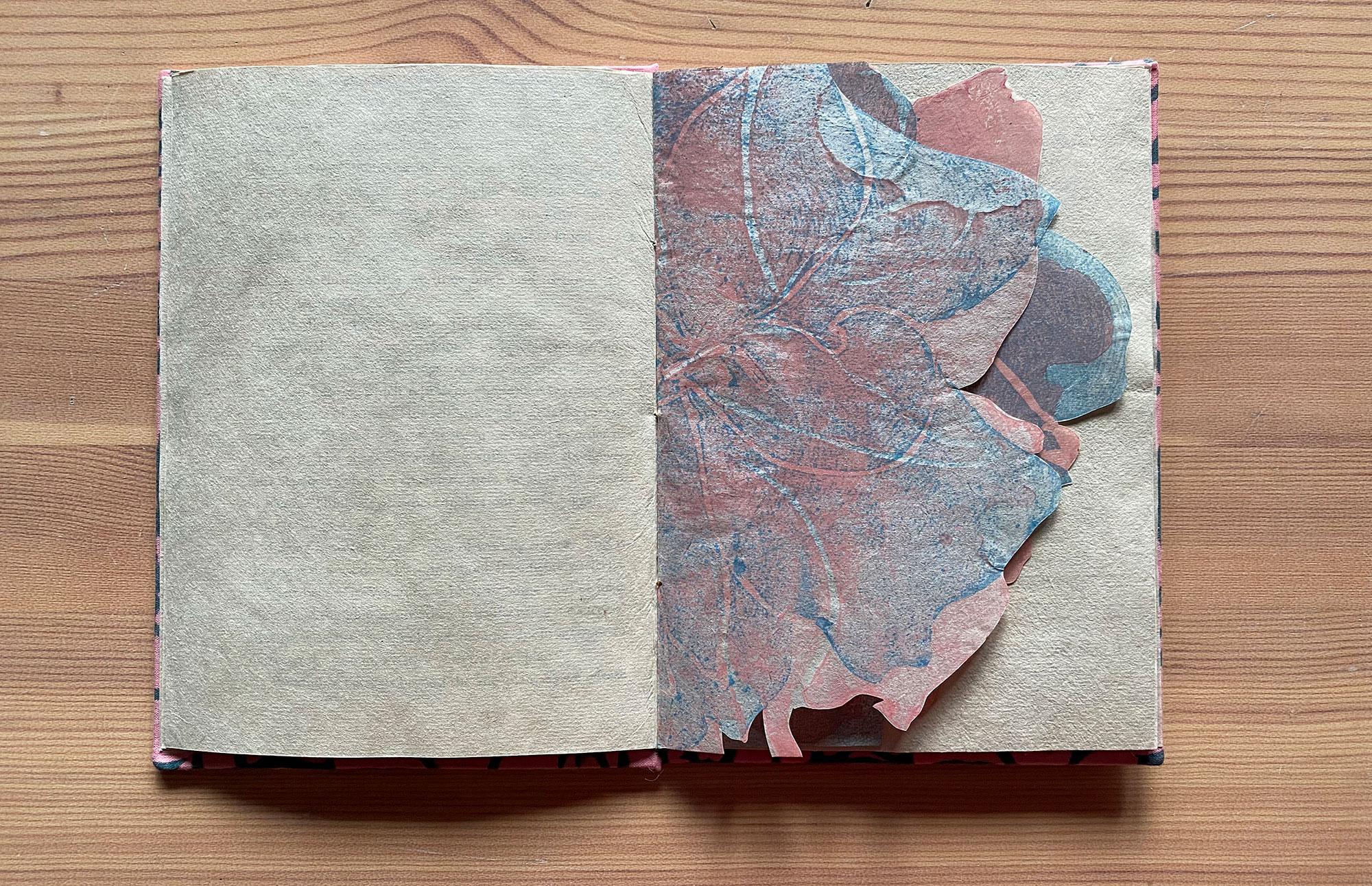 erasure book half spread