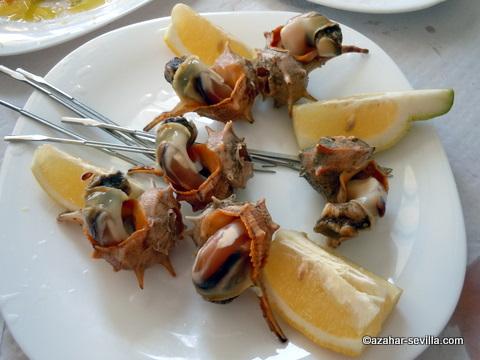 maricuchi whelks