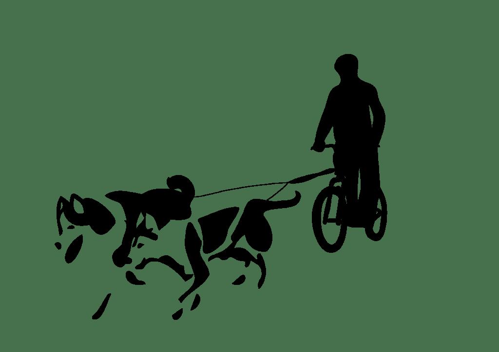 silhouette cani trottinette