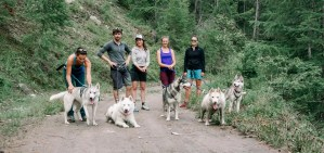 groupe Cani-randonnée
