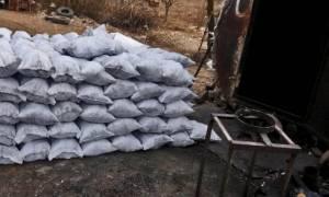 Իջևանի ոստիկանները փայտածուխի ապօրինի արտադրամասեր են հայտնաբերել (ՏԵՍԱՆՅՈՒԹ)
