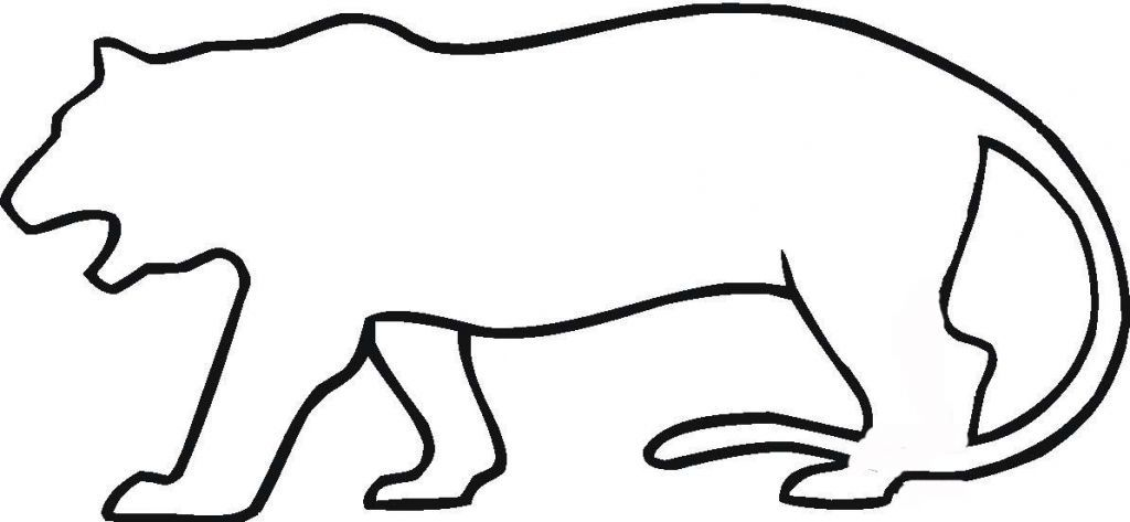 Outline Of A Tiger Coloring Home