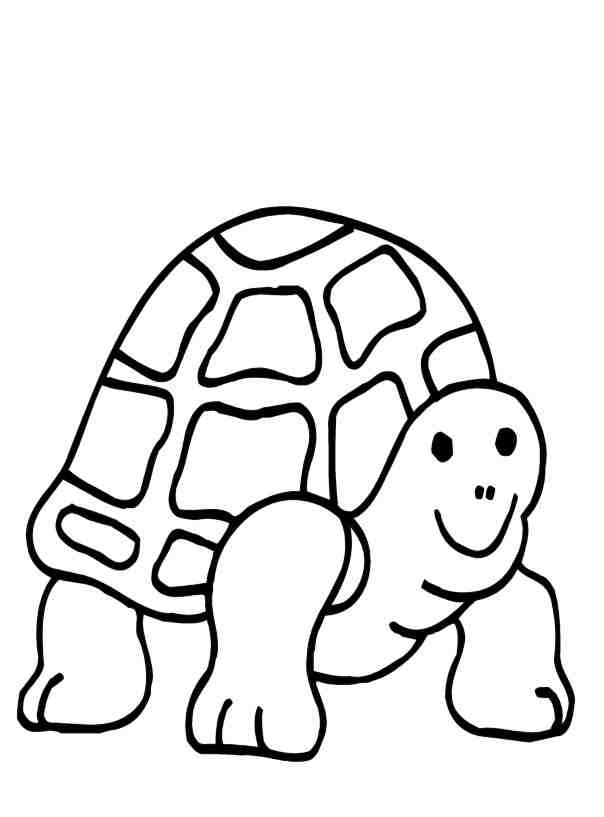 Coloring Pages Of Turtles AZ Coloring Pages