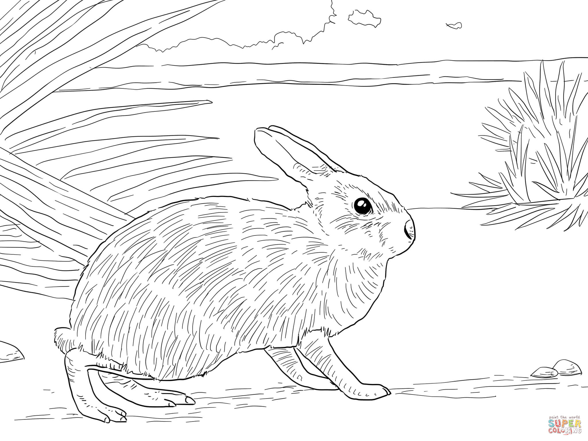 Newborn Rabbit Coloring Pages