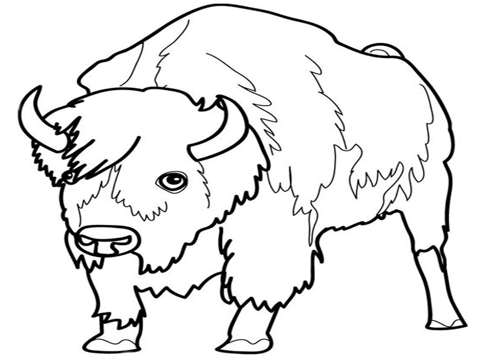 Grassland Animals Coloring Pages