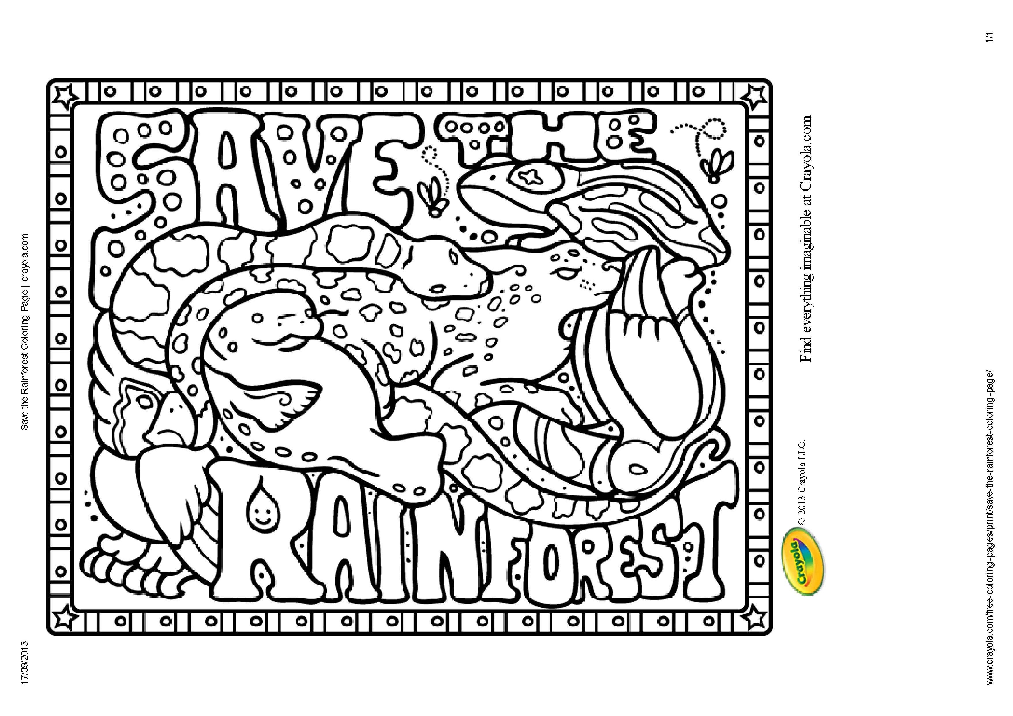 Rainforest Printables For Kids