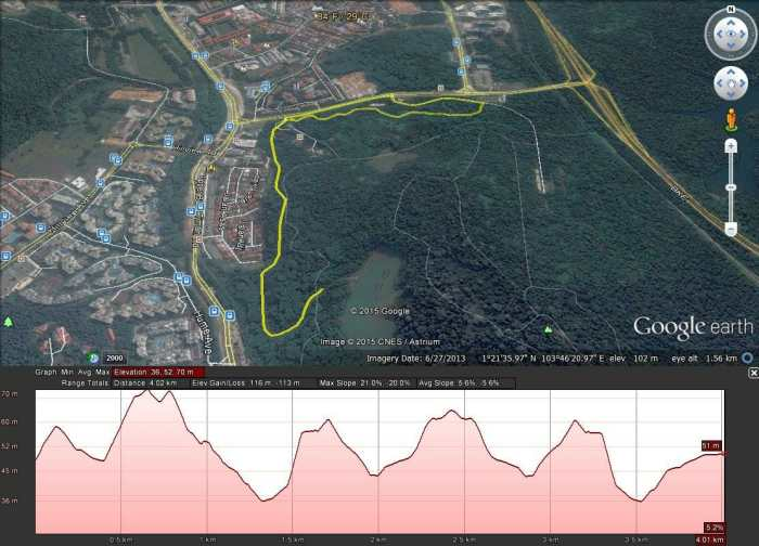 The Great Relay Singapore - Course Profile