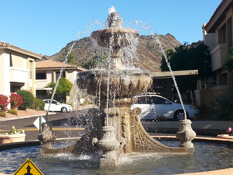 10410 N Cave Creek  Road 2111 Phoenix AZ 85020