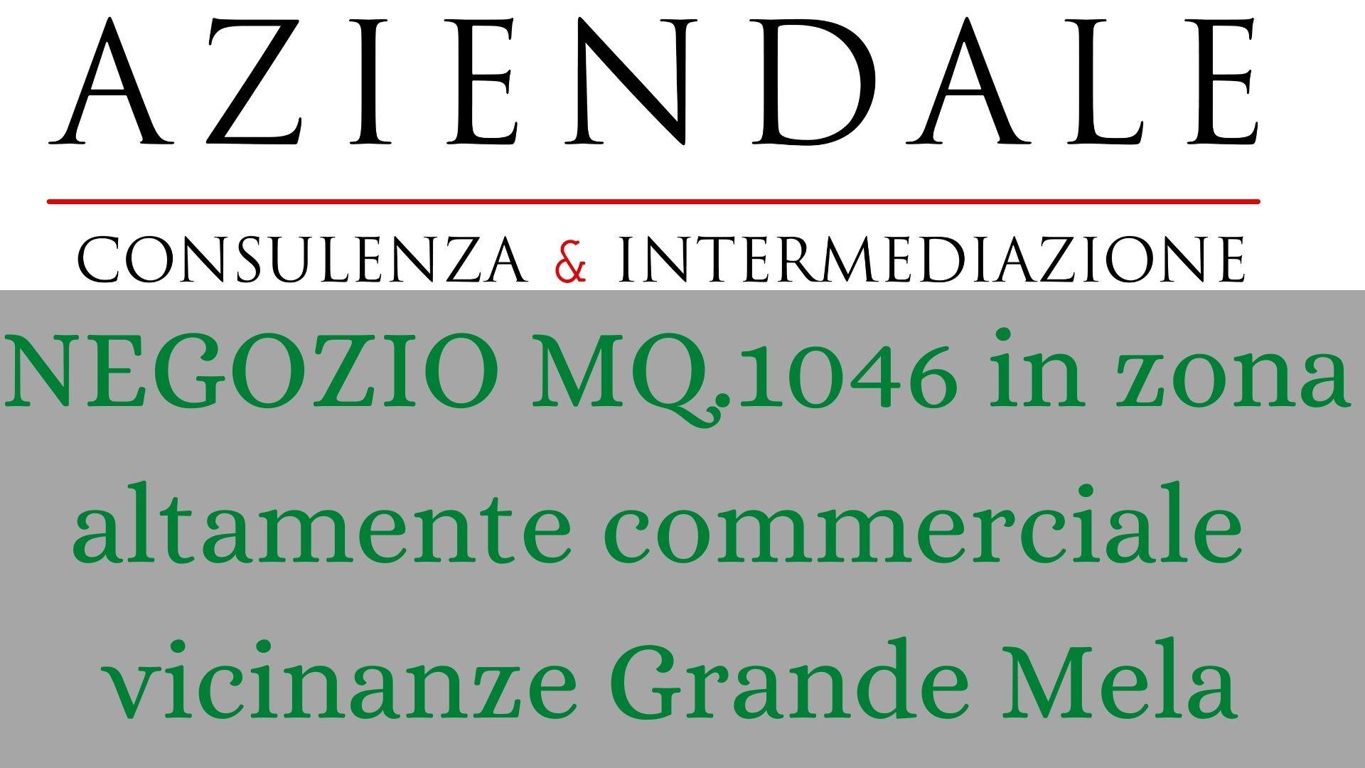 NEGOZIO VUOTO MQ.1046 ZONA GRANDE MELA