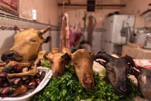 Sheep's Head, Dish of Morocco