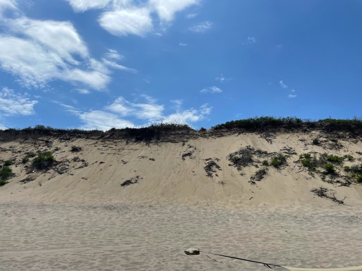 marconi beach dunes