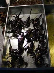 tajlandia-bangkok-robaki-skorpiony