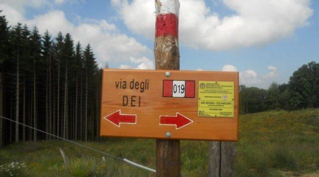 Via Degli Dei Trekking CAI Appennino Camminare Cammino Sentiero Italia Cammino Bologna Firenze A Zonzo Con Zazzu Gianluca Stefanelli