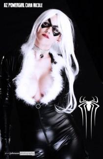 black cat alvin white spider lr