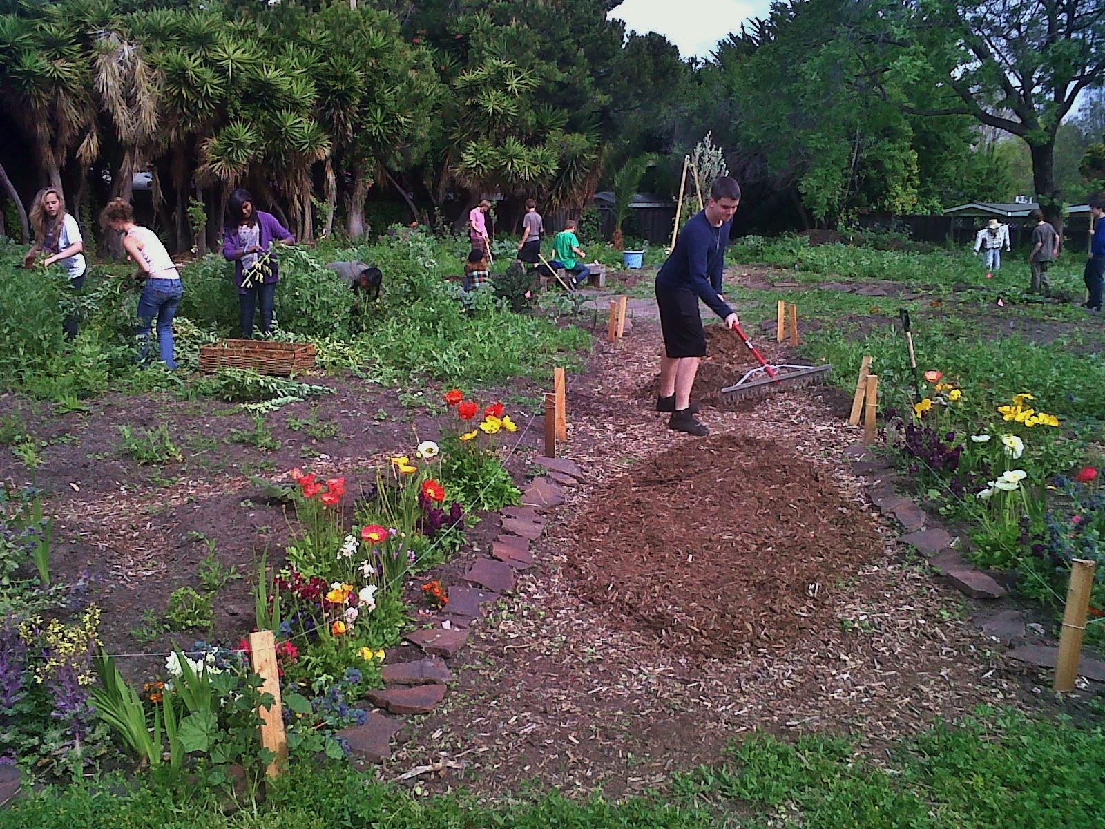 Mountain View Garden