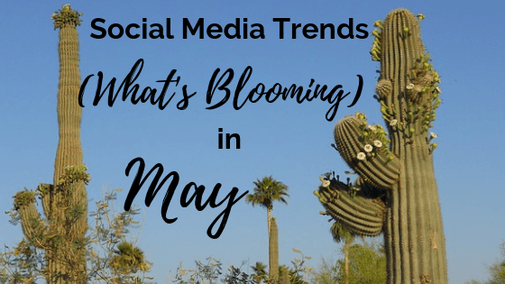 What's trending in May