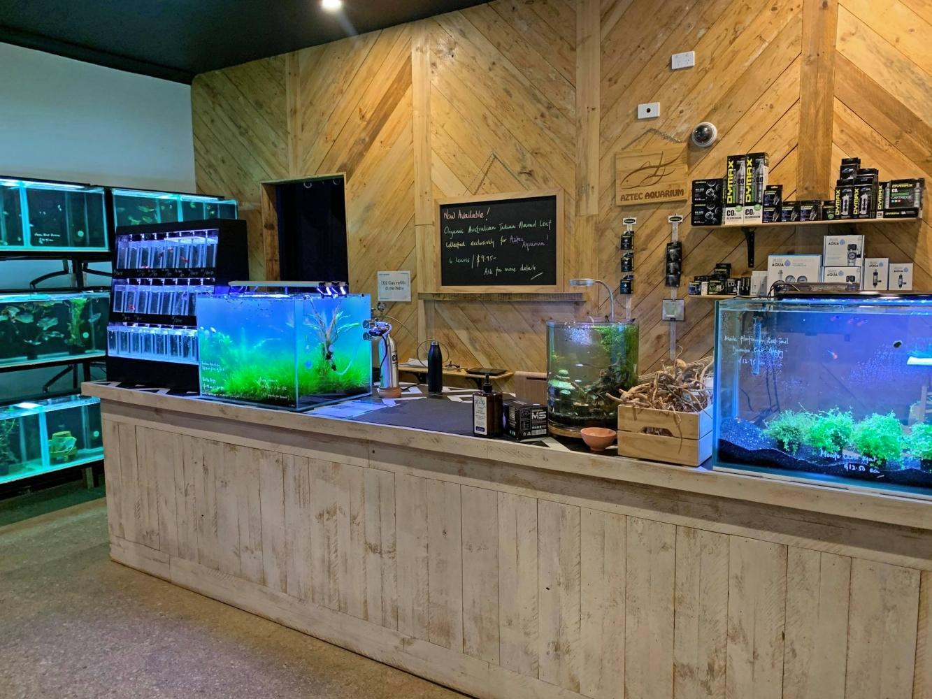 Aztec Aquarium shop Adelaide