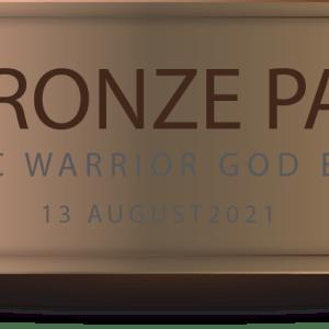 Bronze Pass
