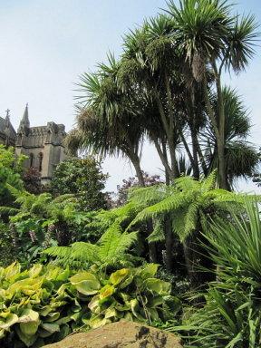 Características de los jardines tropicales