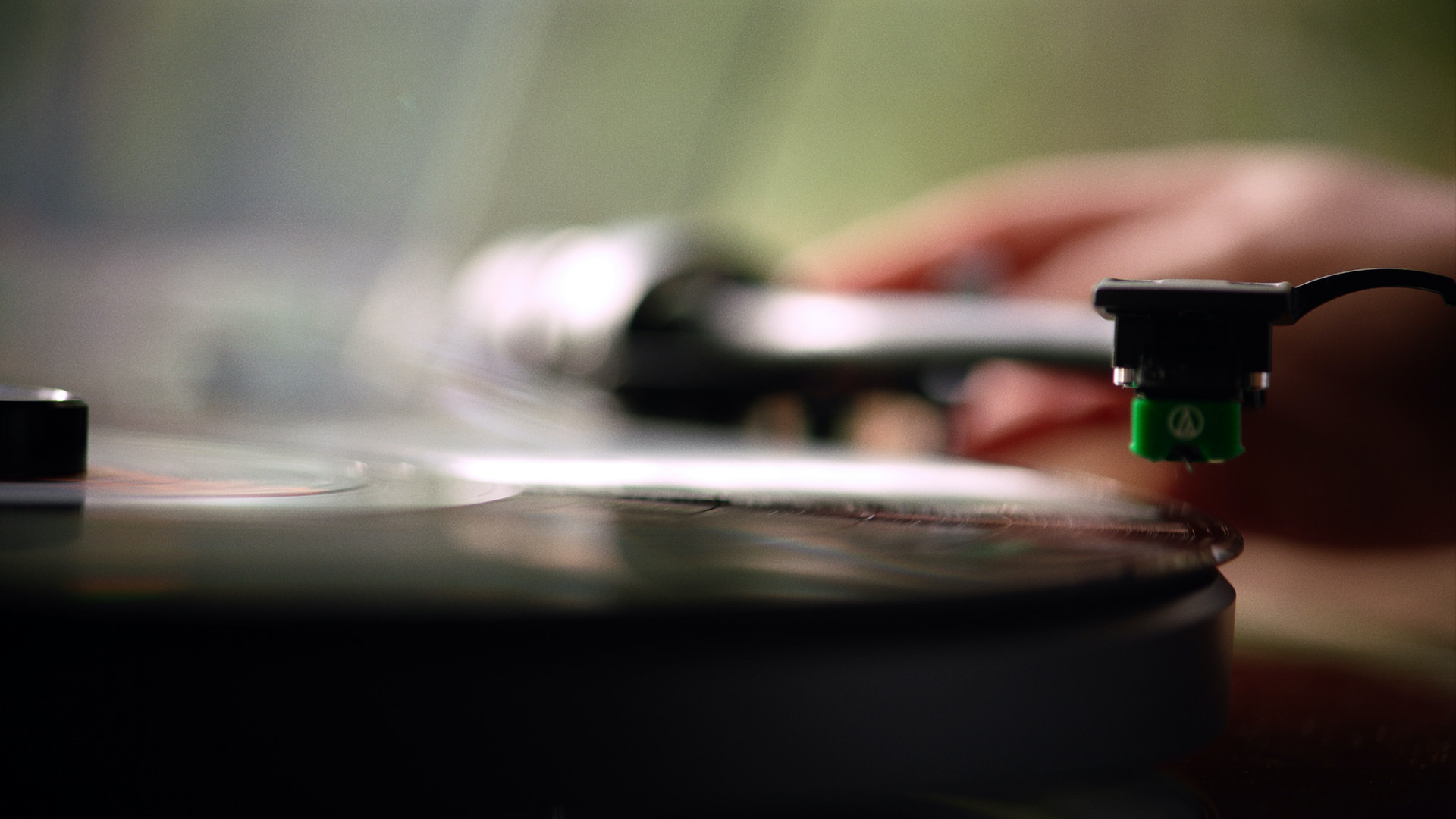Read more about the article Vinyl Nation