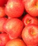 風邪にりんごの効果 すりおろしがいいのはなぜ レシピは?